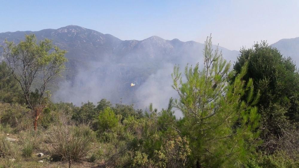 Antalya Gündoğmuş'ta orman yangını