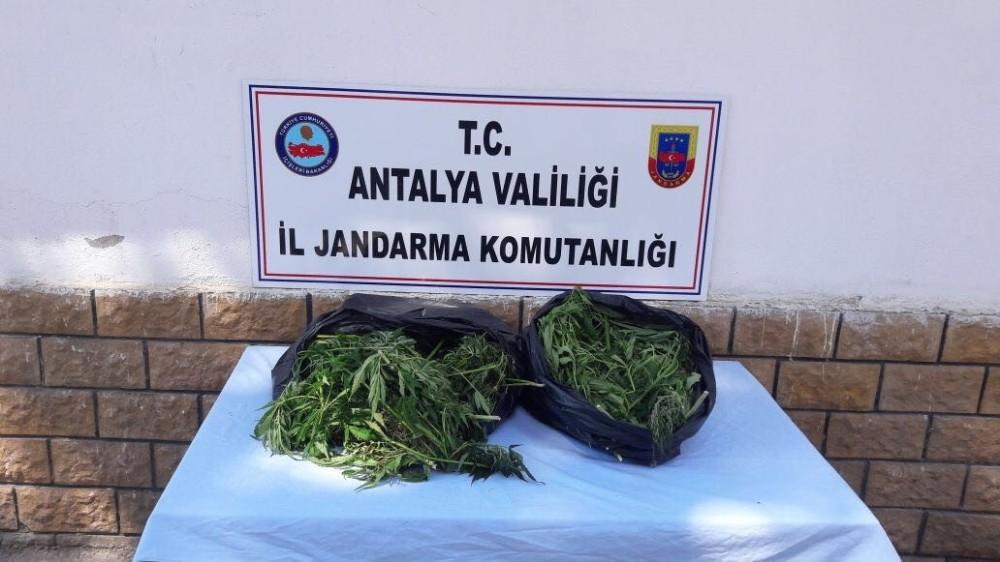 Antalya Aksu da 10 kilogram esrar ele geçirildi