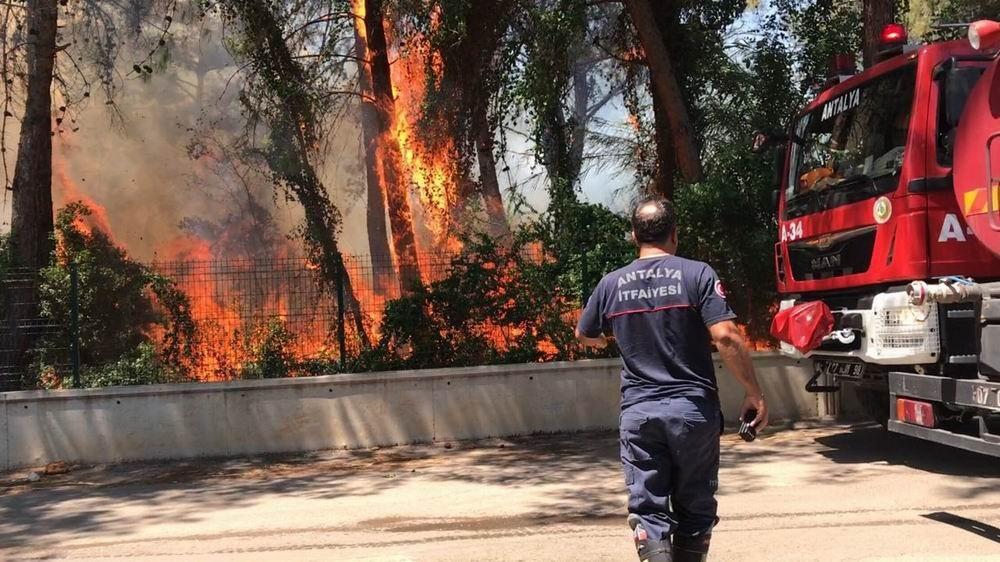 Antalya'da 5 dönümlük orman yandı