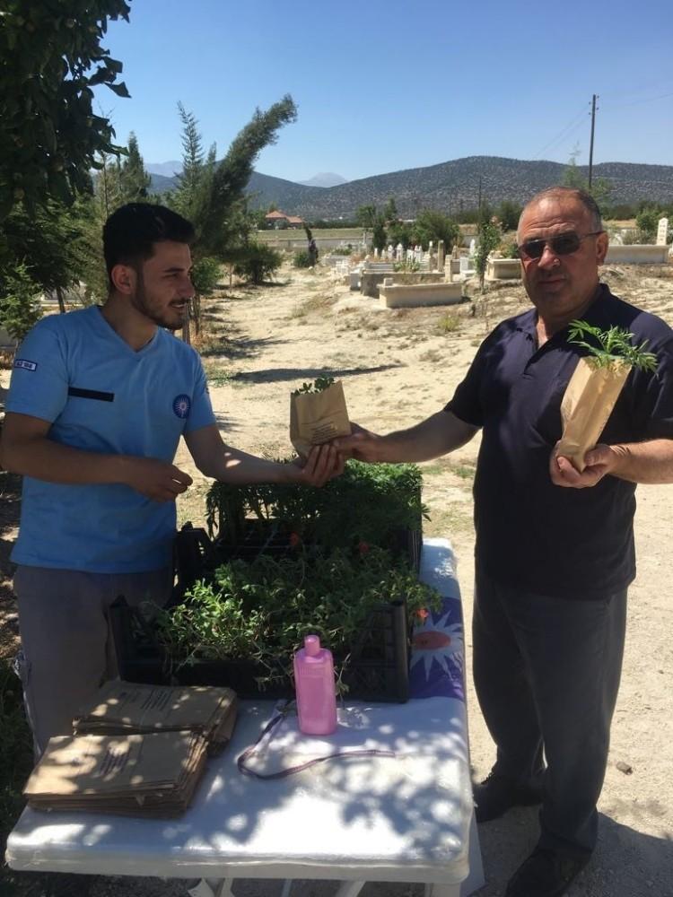 Büyükşehir Belediyesi Mezarlıklarda fidan dağıttı