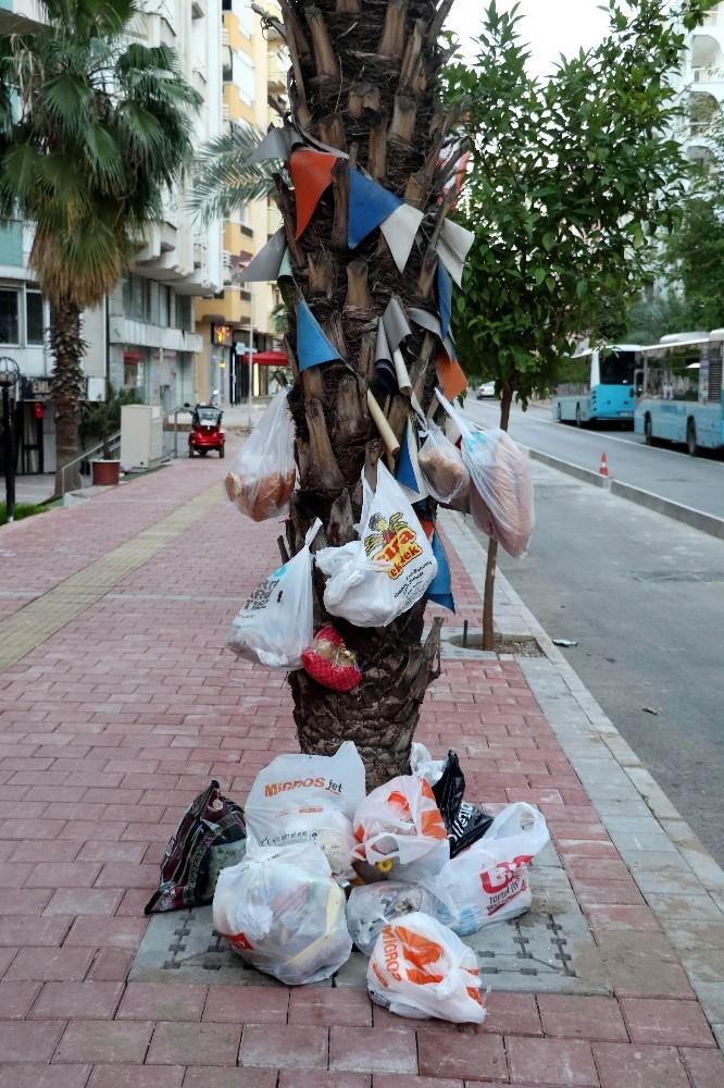 Dilek değil çöp ağacı