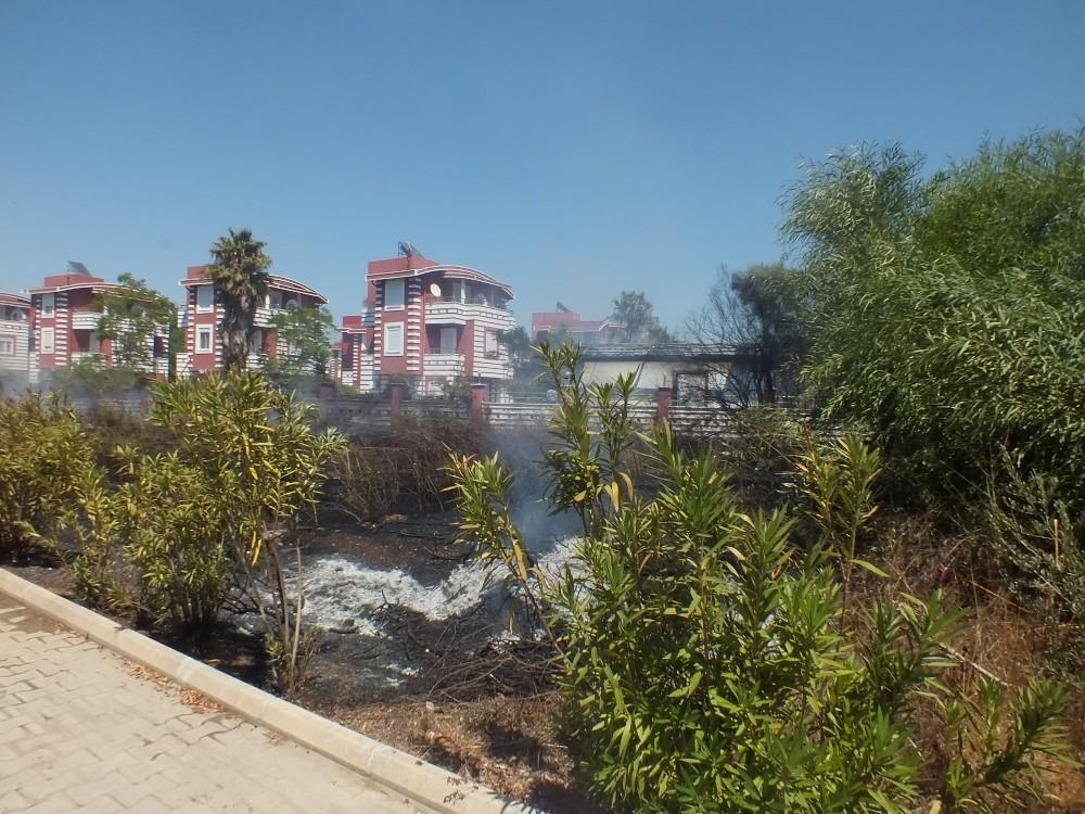 Tatil bölgesinde sazlık yangını