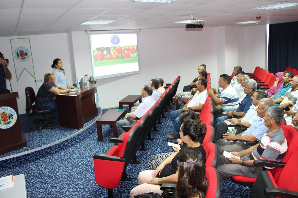 Kumluca'da Üreticiler virüs hastalıklarına karşı bilgilendirdi