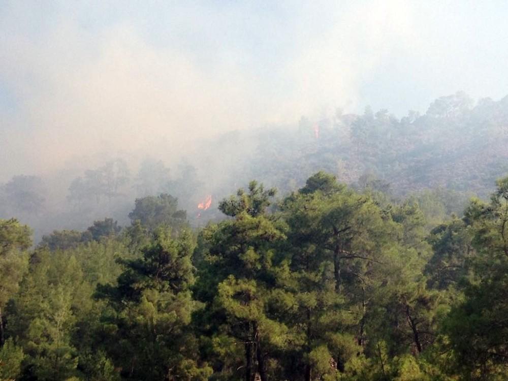 Antalya'da ormanı yangını (1)