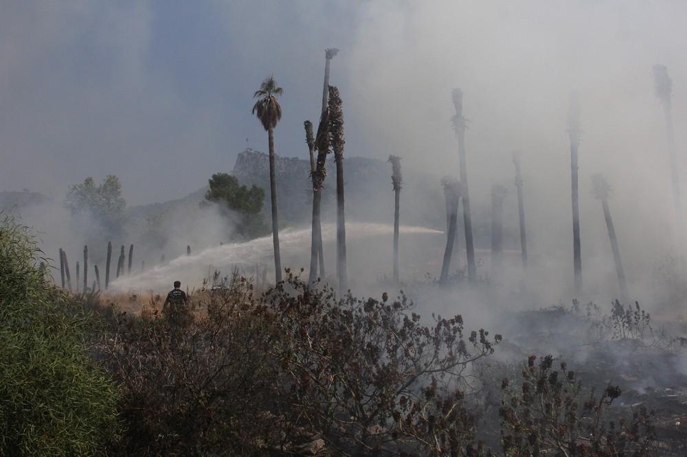 Kemer'de çöp yangını palmiye ağaçlarını kül etti