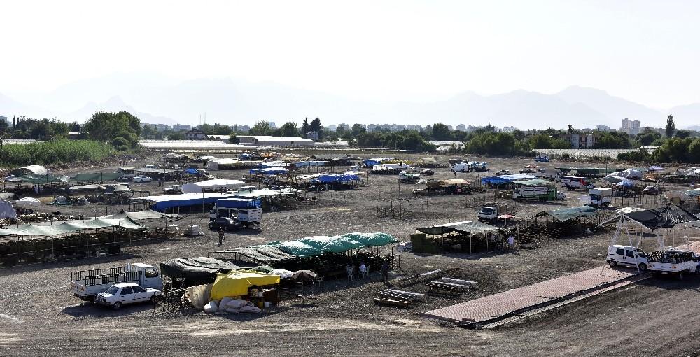 Muratpaşa Belediyesi kurban satış ve kesim yerlerini hazırladı