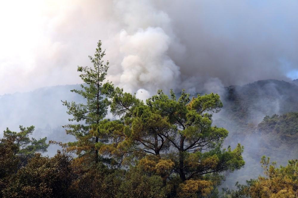 Antalya'daki yangını söndürme çalışmaları devam ediyor