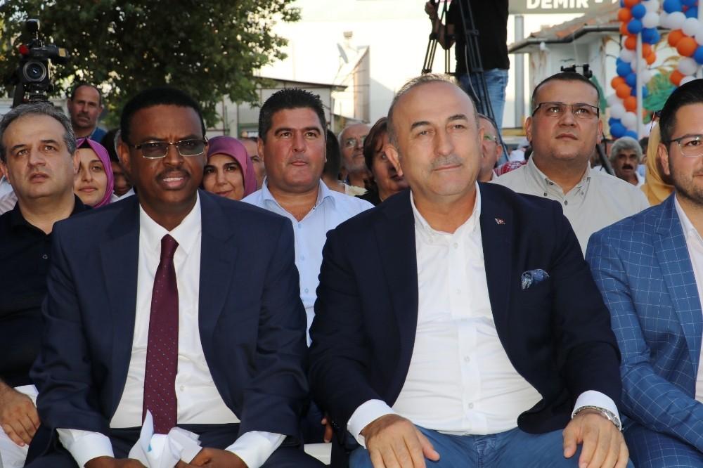 Bakan Çavuşoğlu Kofi Annan'la görüştü