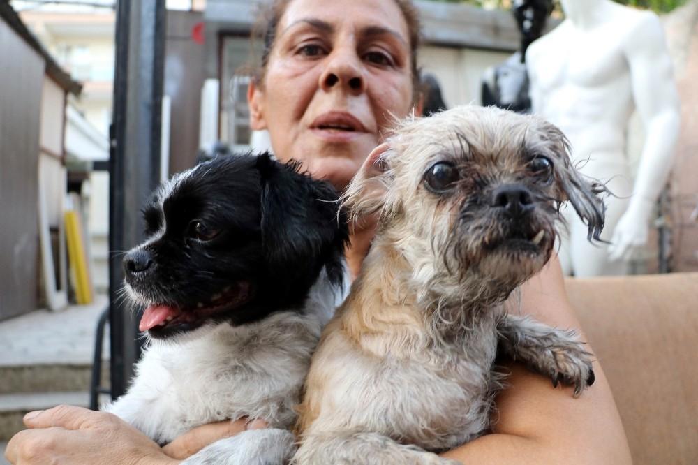 Kedi, köpek ve papağanlar yanmaktan son anda kurtarıldı