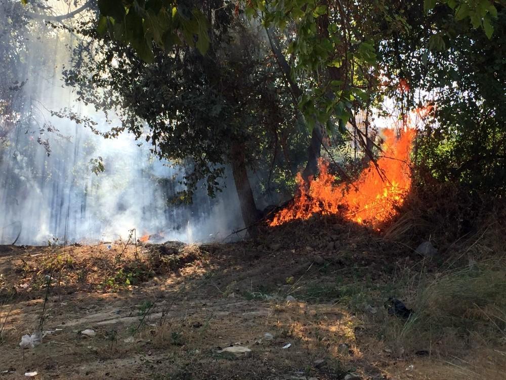 Manavgat Irmağı kenarında yangın