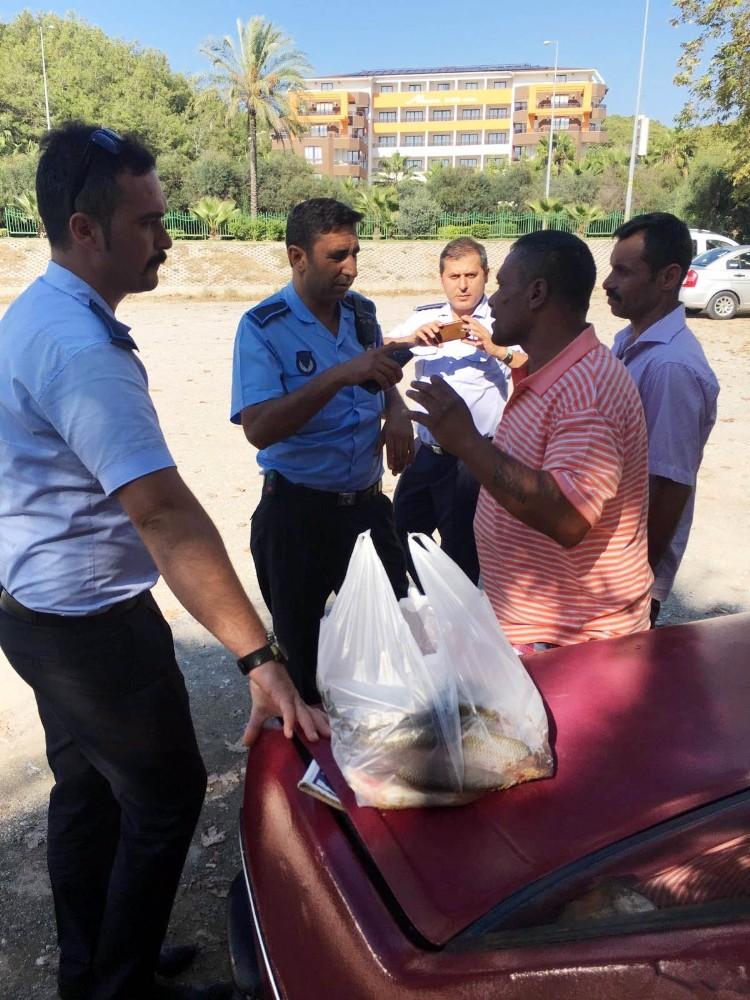 Araç bagajında satılan balıklar imha edildi
