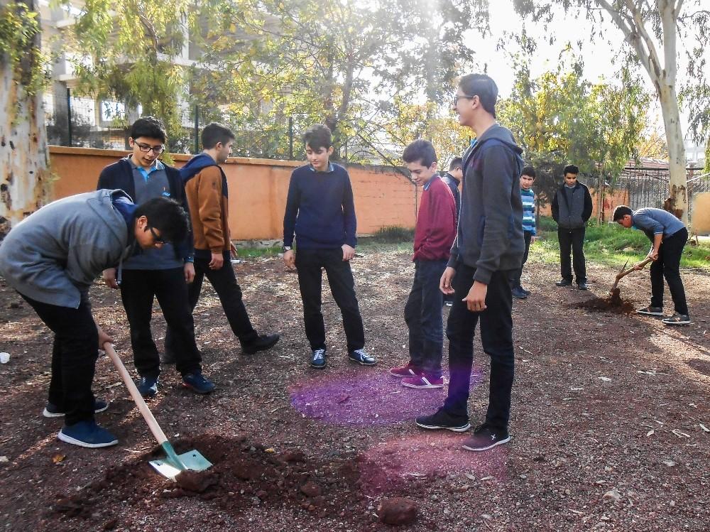 Muratpaşa'dan okul bahçelerine ağaç