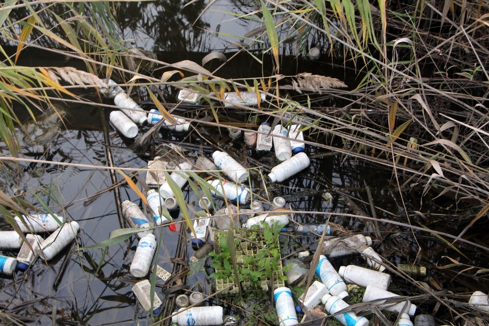 Sulama kanallarındaki zira atıklar tehlike saçıyor