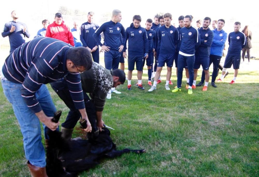 Antalyaspor, kötü gidişat için kurban kesti