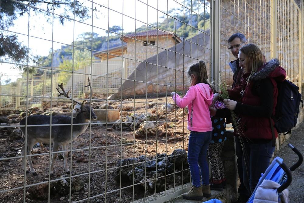 Hayvanat Bahçesi ziyaretçi akınına uğradı