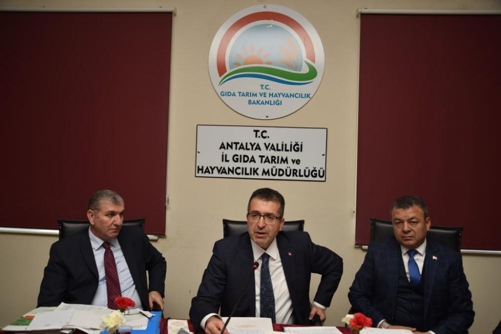 Antalya tarımı masaya yatırıldı