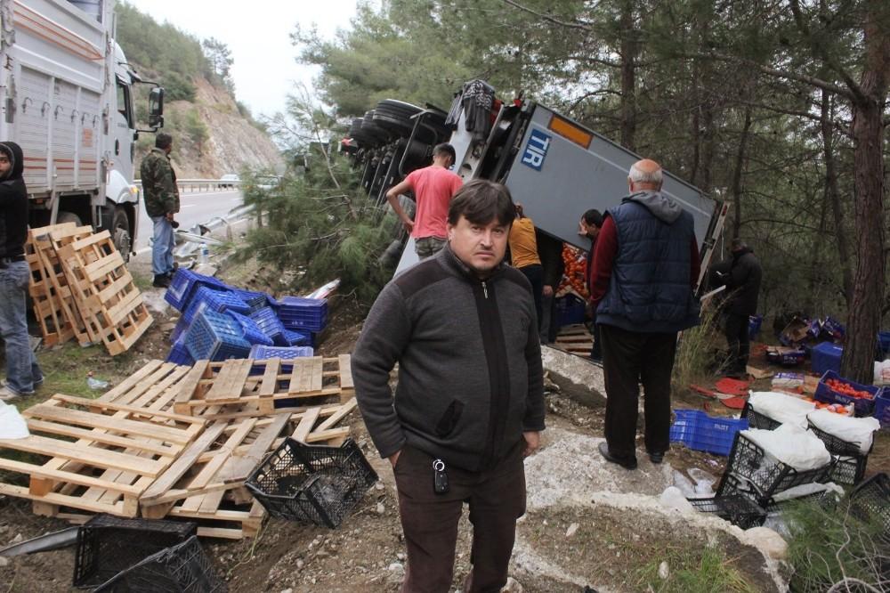 Antalya'da önüne domuz sürüsü çıkan tır devrildi