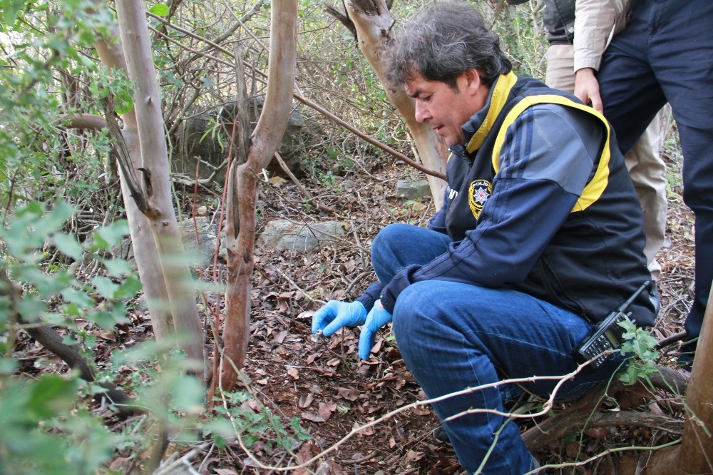Ormanlık alanda insana ait olduğu tahmin edilen kemik bulundu