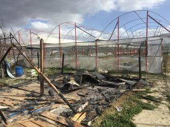 Antalya'da 8 baraka ev yakıldı, seralara zarar verildi