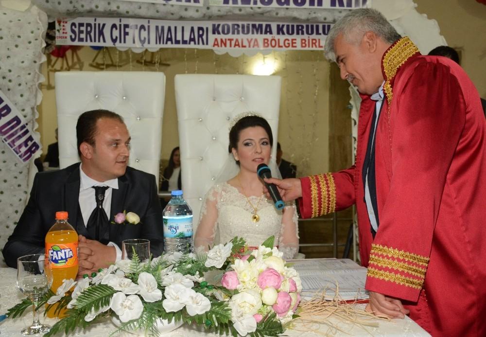 Başkan Çalık, genç çiftin nikahını kıydı