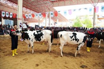 Teke Yöresi 4. Tarım ve Hayvancılık Fuarı'na destek