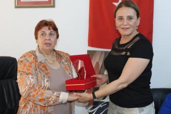 Ahmet Şık'ın annesine 'yılın annesi' plaketi