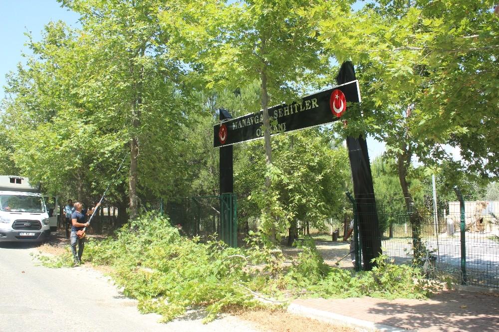 Büyükşehir Belediyesi, Şehitler Ormanı'na sahip çıktı