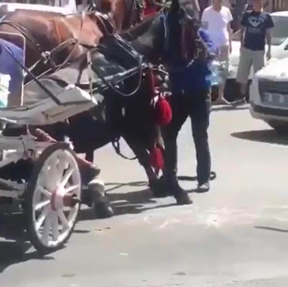 Faytona koşulan at aşırı sıcaktan yere yığıldı