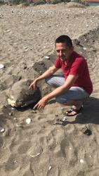 Kumluca'da başı ezilmiş caretta ceratta bulundu