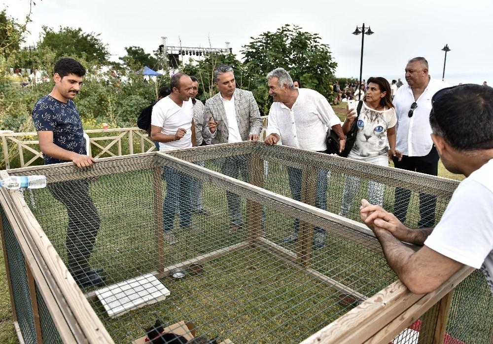 Müzayedeyle 165 kilogram kedi köpek maması toplandı