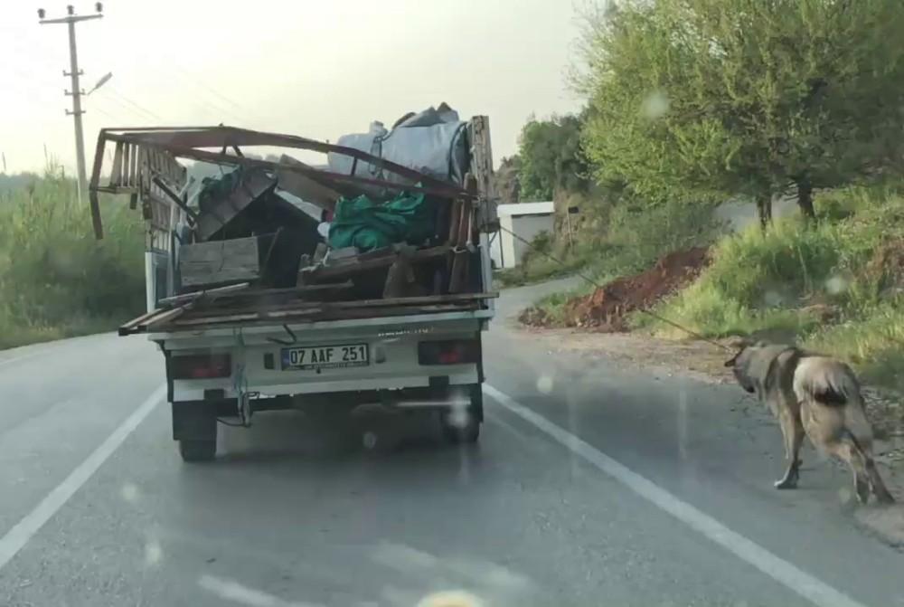 Antalya'da köpeği iple kamyonetin arkasına bağlayıp sürükledi