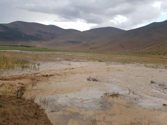 Antalya'da şiddetli yağmur nohut tarlalarını çamur deryasına çevirdi