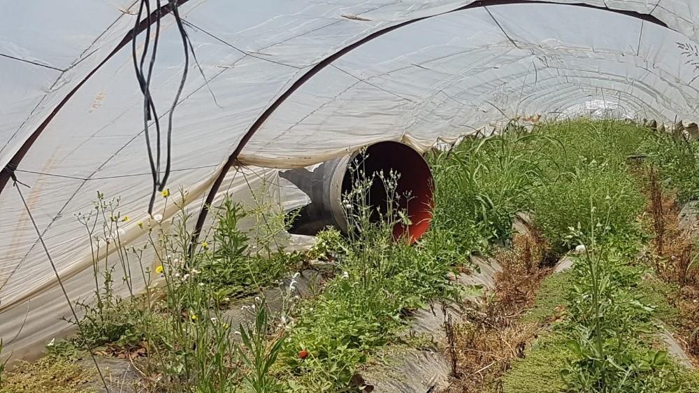 Antalya'da yoldan çıkan tırdaki borular çilek tarlasına düştü