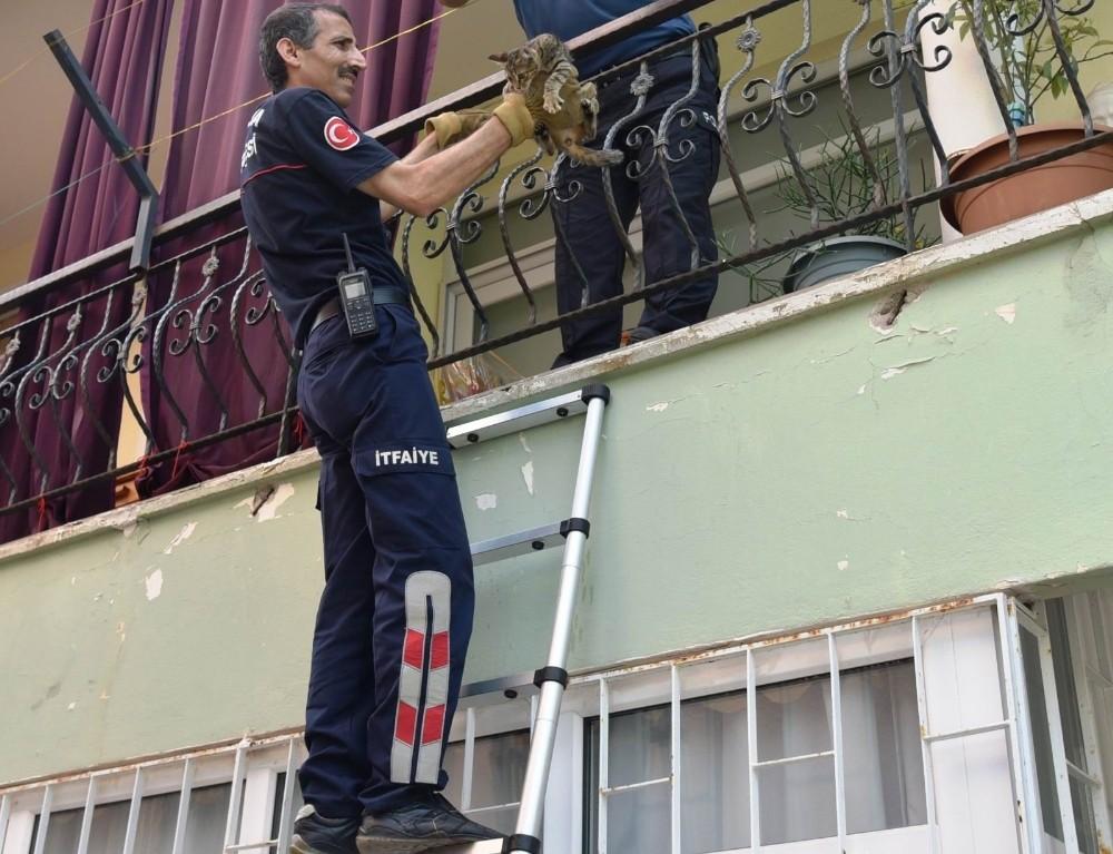Girdikleri balkonda 2 gün mahsur kalan yavru kedileri itfaiye kurtardı