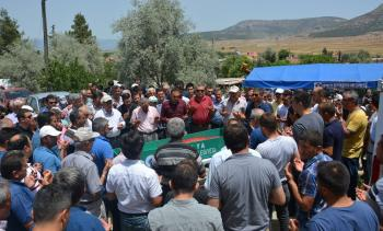 Kaza kurbanı gıda mühendisi gözyaşları arasında toprağa verildi