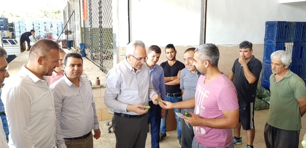 """Milletvekili Aydın: """"Tarım ve ihracat şahlanacak"""""""
