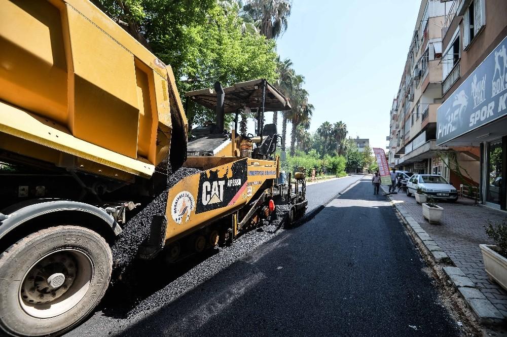 Sedir'de asfalt çalışması
