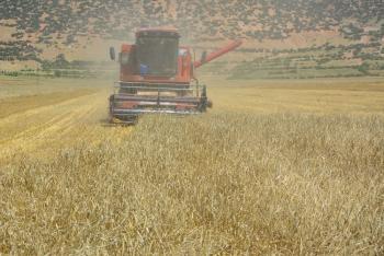 Yayla'da hasat dönemi başladı