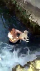 Antalya'da dereye düşen yavru köpek suya giren genç tarafından kurtarıldı