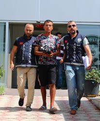 Antalya'da iş yeri faresi güvenlik kamerasına takıldı