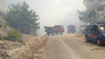 Antalya'da orman yangını (1)