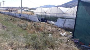 Antalya'da otomobilin çarptığı genç hayatını kaybetti