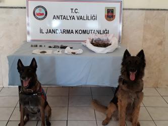 Antalya'da uyuşturucu operasyonuna 17 tutuklama