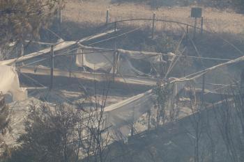 Antalya'daki yangın kontrol altına alınıyor