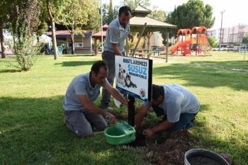 Kepez Belediyesi'nden sokak hayvanlarına ek suluk
