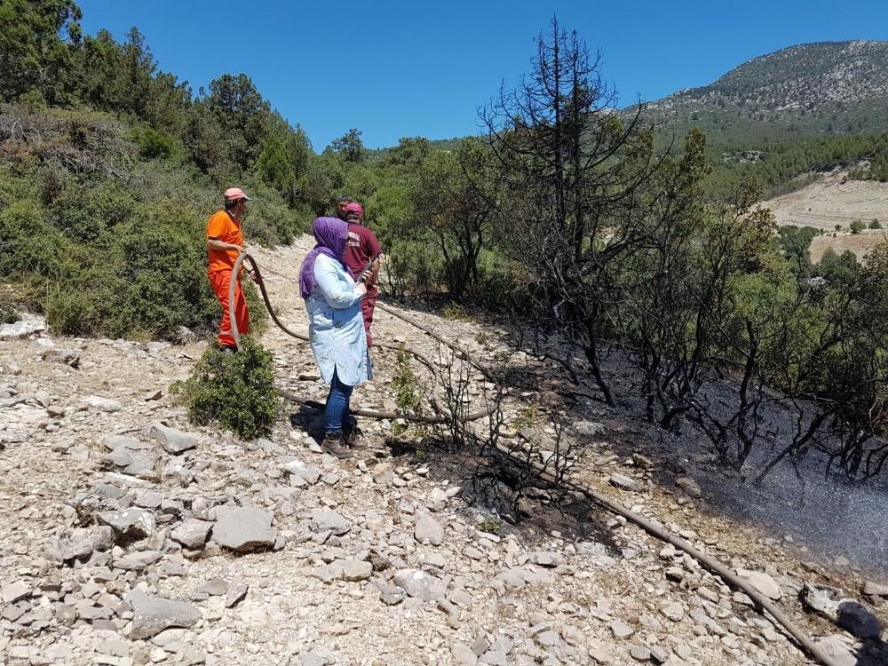 Korkuteli'nde sezonun ilk orman yangını ucuz atlatıldı.