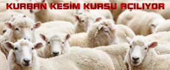 Kumluca'da kurban kesim kursu açılacak