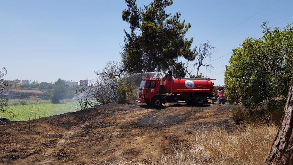 Manavgat'ta çocukların oyunu yangına sebep oldu