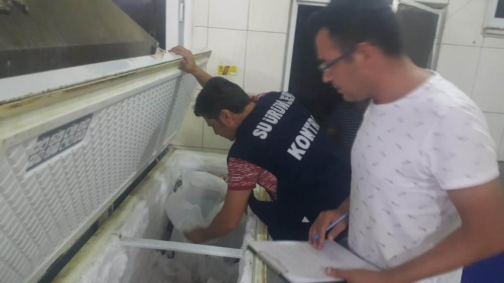 Antalya'da av yasağı bulunan Orfoz ve Lagos denetimi