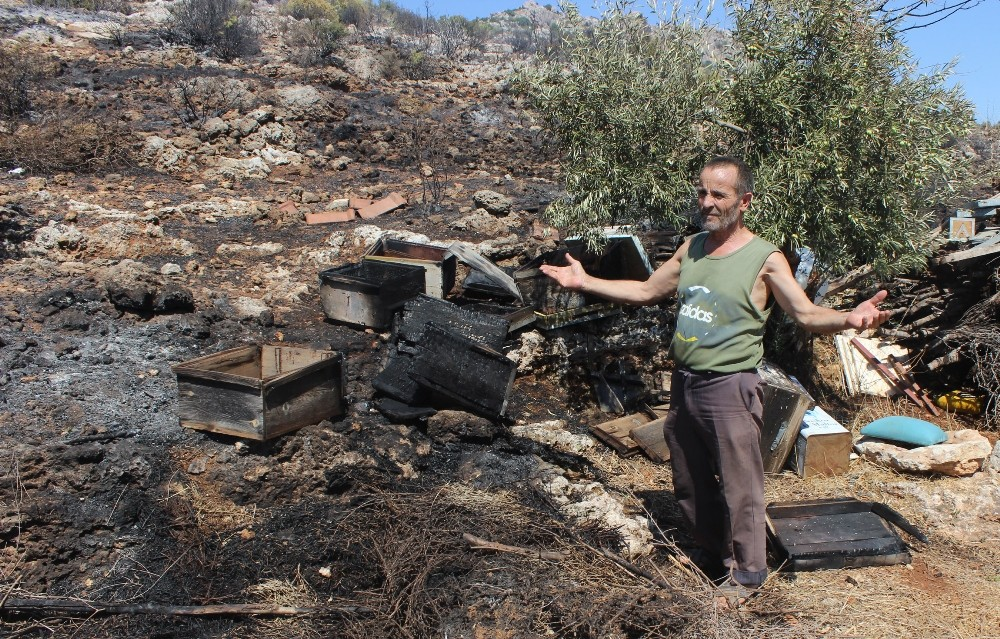 Antalya'da makilik yangını